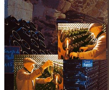 Monsieur Révolte mirant un 1er cru dans les caves du Champagne Gaston Révolte